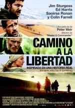 Camino a la libertad (the way back)